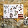 Christmas Wildlife card Nature's Notebook Hannah Longmuir